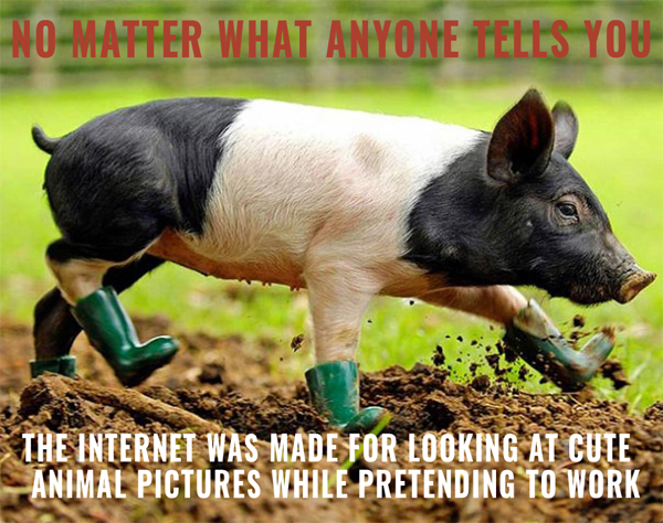 pig-in-boots
