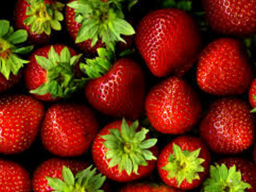 strawberries for fundraising