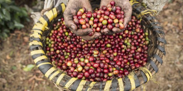 The beauty of a Fair Trade Coffee Fundraiser
